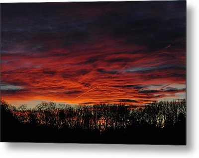 Tree Line Sunset Metal Print by Peter  McIntosh