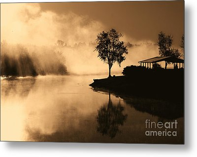 Tree Midst The Fog- Sepia Metal Print by Gina Collins