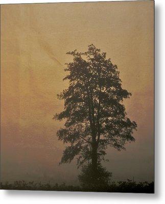 Tree Metal Print by Odd Jeppesen