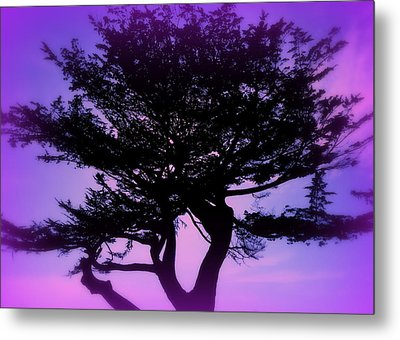 Tree Of Glory Metal Print by Cindy Wright