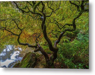 Tree Of Life Metal Print by Ken Stanback