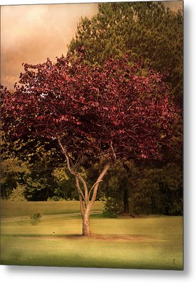 Tree Of Love Metal Print by Jai Johnson