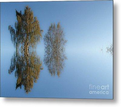 Tree Reflection In Vaerebrovej Metal Print