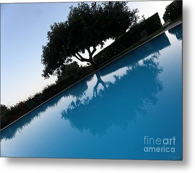 Metal Print featuring the photograph Tree Reflection by Tanya  Searcy