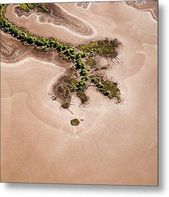 Trees And Mudflats Metal Print by Judi Mowlem