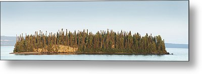 Trees Covering An Island On Lake Metal Print by Susan Dykstra