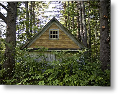 Trees Grow Up Around An Abandoned House Metal Print by Hannele Lahti