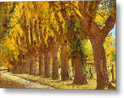 Trees In Fall - Brown And Golden Metal Print by Matthias Hauser