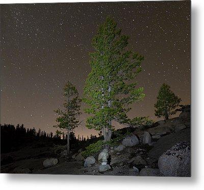Trees Under Stars Metal Print by Sean Duan