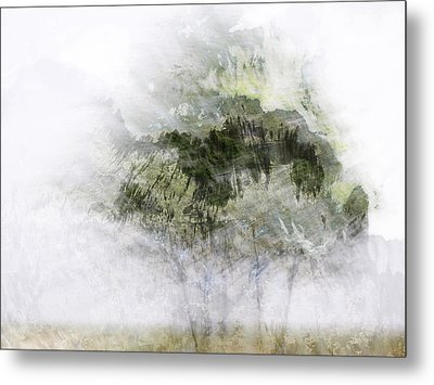 Trees Within Trees Metal Print by Carol Leigh