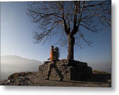 Trekking Around A Tree With A Stone Metal Print by Alex Treadway