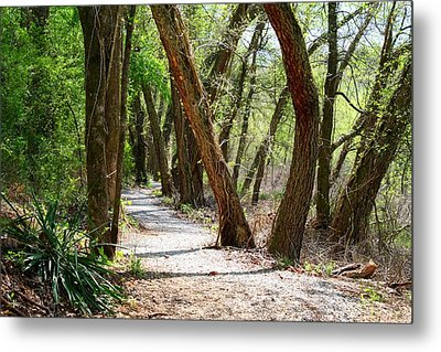 Metal Print featuring the photograph Trestle Walk by Kathryn Meyer