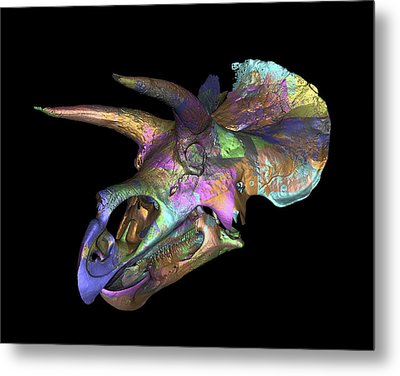Triceratops Dinosaur Skull Metal Print by Smithsonian Institute