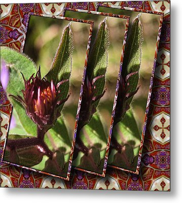 Metal Print featuring the photograph Triple Buds by Mario Carini