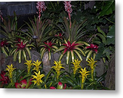 Tropical 1 Metal Print by Wanda J King