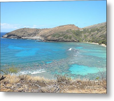 Tropical Bay Metal Print by Silvie Kendall