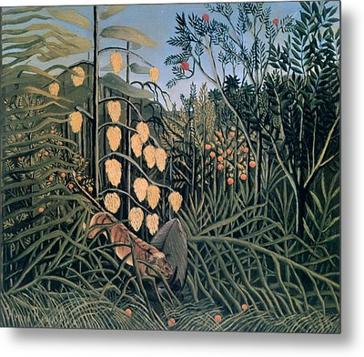 'tropical Forest' By Henri Rousseau Metal Print by Photos.com