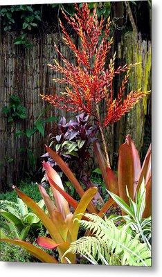 Tropical Garden Metal Print by Karon Melillo DeVega
