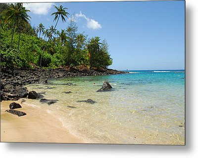 Metal Print featuring the photograph Tropical Paradise by Lynn Bauer