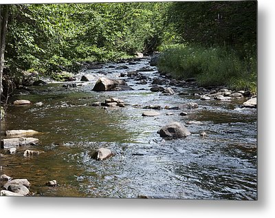 Trout River Metal Print