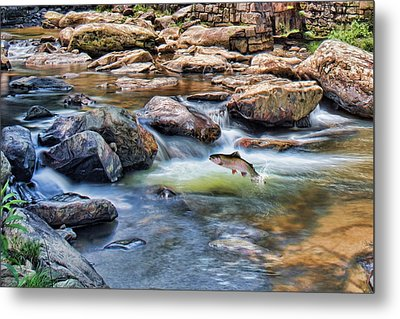 Metal Print featuring the digital art Trout Stream by Mary Almond