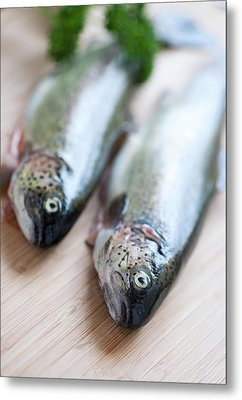 Trouts Metal Print by Carlo A