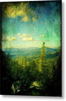 Truckee Trails Metal Print by Leah Moore