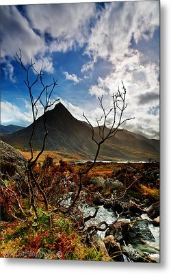 Metal Print featuring the photograph Tryfan And Tree by Beverly Cash