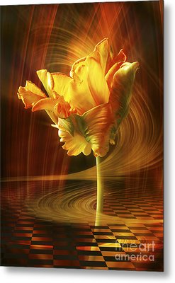 Tulip In Movement Metal Print by Johnny Hildingsson