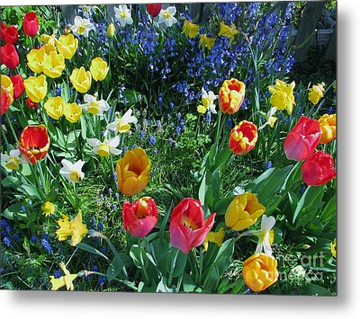 Tulips Dancing Metal Print by Rory Sagner