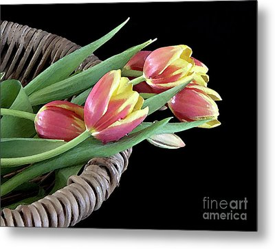Tulips From The Garden Metal Print by Sherry Hallemeier