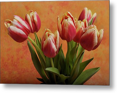 Metal Print featuring the photograph Tulips by James Bethanis