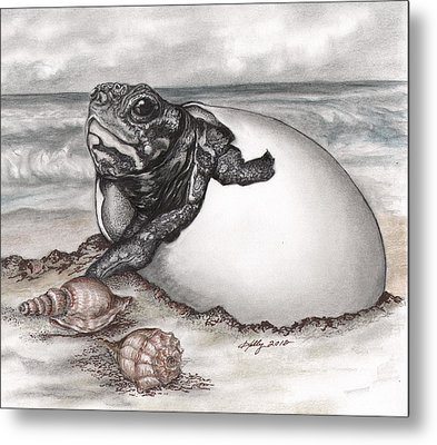 Turtle Beach Metal Print by Kathleen Kelly Thompson