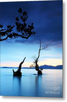 Twilight And Dead Tree In The Sea  Metal Print