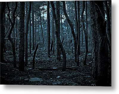Metal Print featuring the photograph Twilight In The Smouldering Forest by DigiArt Diaries by Vicky B Fuller