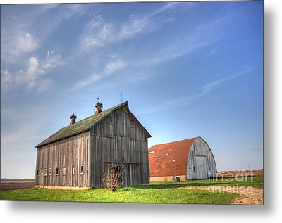 Twins Metal Print by David Bearden