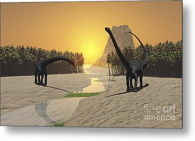 Two Diplodocus Dinosaurs Come Metal Print by Corey Ford