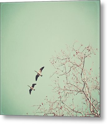 Two Geese Migrating Metal Print by Laura Ruth