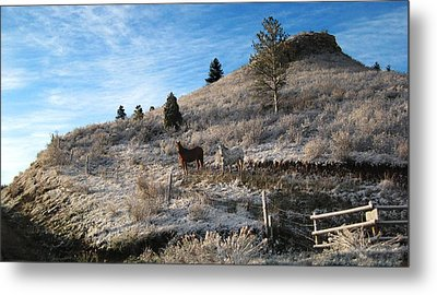 Two Horses Metal Print by Ric Soulen