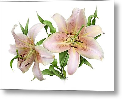 Two Lilies Metal Print by Artellus Artworks