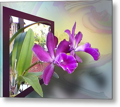 Metal Print featuring the digital art Two Orchids by Ginny Schmidt