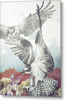 Two Ospreys Metal Print