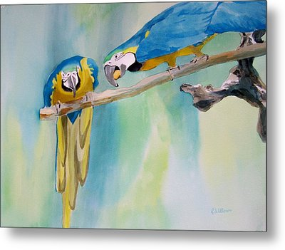 Two Parrots Metal Print by Richard Willows