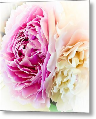 Metal Print featuring the photograph Two Peonies by Ronda Broatch