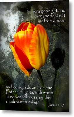 Two Tulips Shadow Scripture Metal Print by Cindy Wright