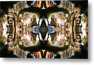 Metal Print featuring the photograph Underground Creature  by Sandro Rossi