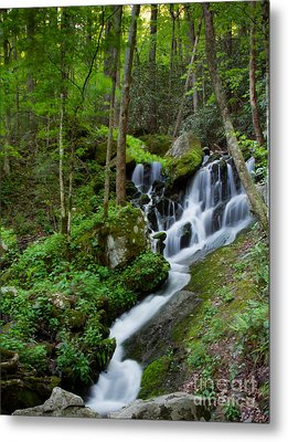 Unnamed Falls At Tremont Nc Metal Print by E Mac MacKay