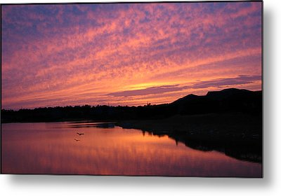 Metal Print featuring the photograph Untitled Sunset-6 by Bill Lucas
