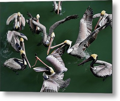 Up In The Air Metal Print by Paulette Thomas