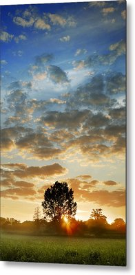 Metal Print featuring the photograph Up Up And Away by John Chivers